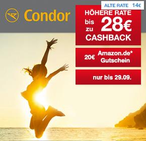 22_09_condor-cashback-shoop_290x280